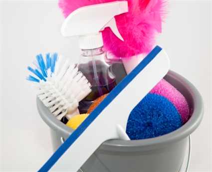 Pros and cons of a cleaning franchise